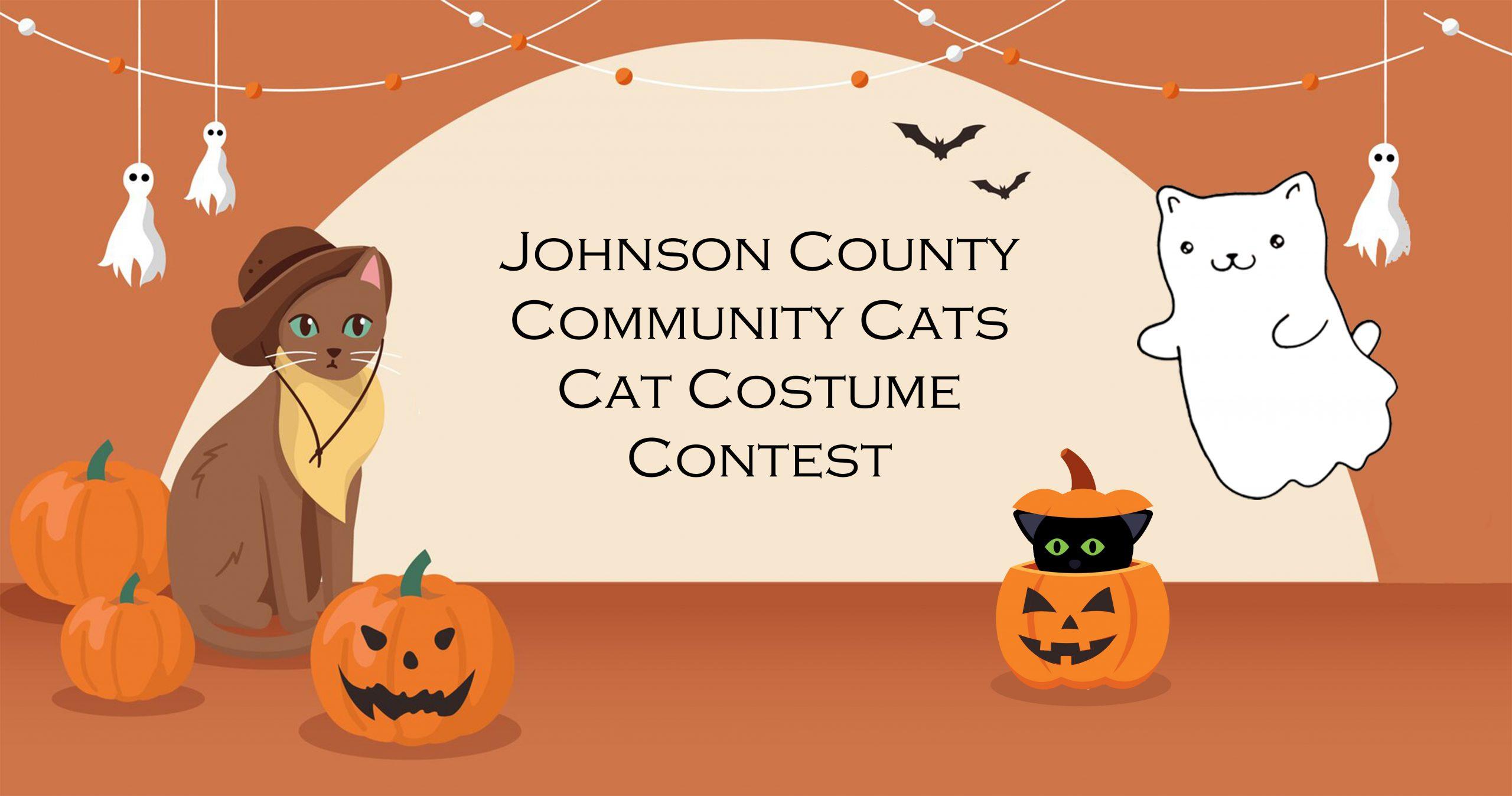 Cat Costume Contest